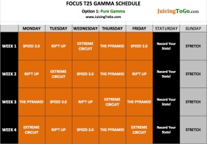 Focus-T25-Gamma-Schedule-Option-1