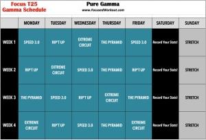 Focus-T25-Gamma-Schedule-Pure-Gamma
